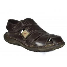 TSF Men Brown Sandal